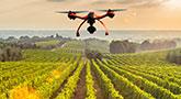 file/ELEMENTO_NEWSLETTER/19757/agricoltura_precisione_drone_111217.jpg