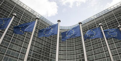 file/ELEMENTO_NEWSLETTER/20292/Unione_Europea_bandiere_Palazzi_Bruxelles_140618.jpg