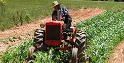file/ELEMENTO_NEWSLETTER/20538/agricoltura_agricoltore_270917.jpg