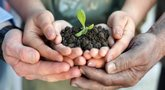 file/Image/dalleRegioni/Agricoltura_sociale.jpg