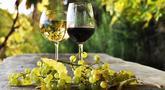 file/Image/dalleRegioni/vitivinicolo.jpg