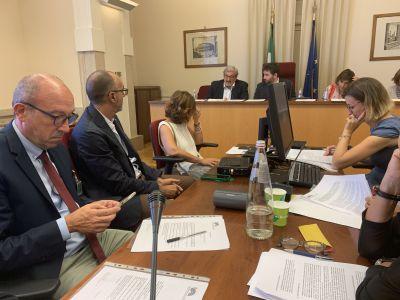 Agricoltura: Audizione (Regioni) su riforma Agea