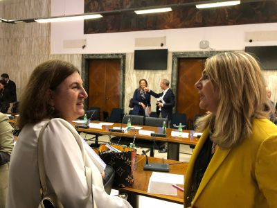 Reddito di cittadinanza: confronto Regioni - Catalfo